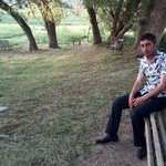 Photo Hamlet, I'd like to meet a girl - Wamba: online chat & social dating