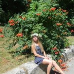 Photo Gven, I'd like to meet a guy aged 26 - 40 years old - Wamba: online chat & social dating